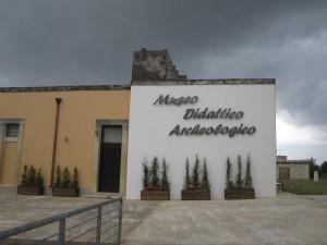 MUSEO CAVALLINO