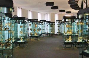 museo-castromediano-lecce-1024x670